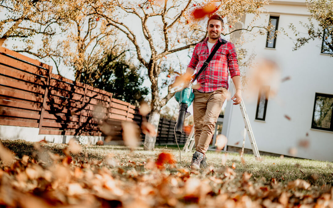 Fall Cleanup & Curb Appeal Tips